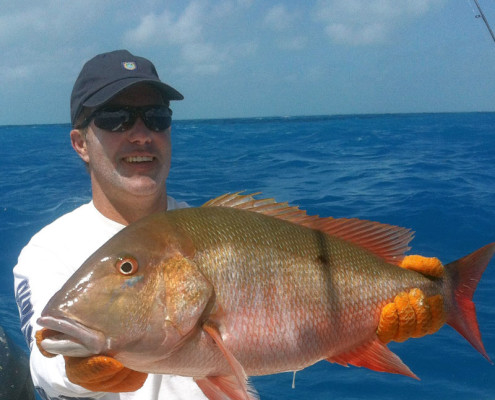 Mutton Snapper caught while Reef Fishing in Islamorada FL